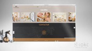 Diseño Web WordPress. Diseño web en Málaga.