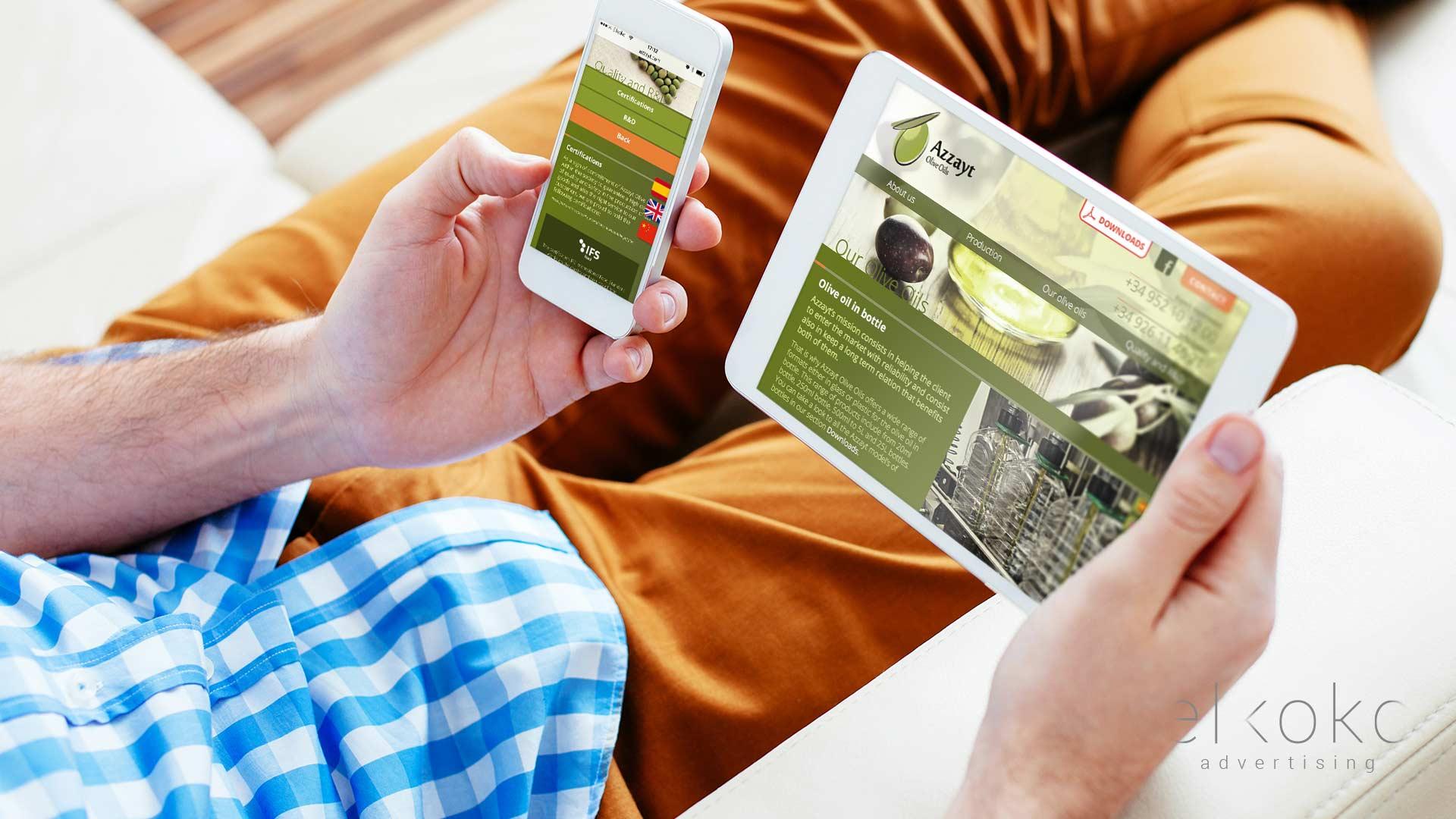 Diseño Web Málaga. Agencias de diseño web en Málaga. Wordpress.